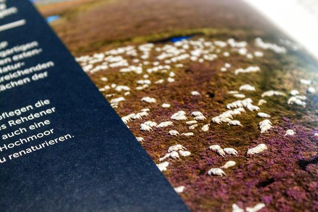 Naturschutz - Bild aus der Broschüre